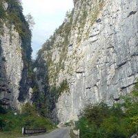 Дорога на озеро Рица. :: Чария Зоя