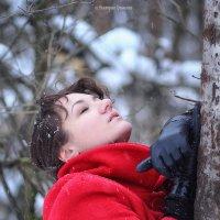 зима, прощай! :: Виктория Гринченко