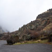 Туман и дорога :: Виктория Большагина