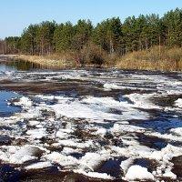 Спешит река свободу обрести... :: Лесо-Вед (Баранов)