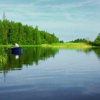 Рыболов :: Валерий Талашов