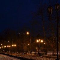 Ночь. Улица. Фонарь :: Люда Свой край