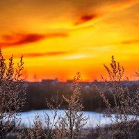 Ещё в озёрах толстый лёд Трава по прежнему сухая... :: Анатолий Клепешнёв