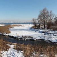 Река и речка :: Dr. Olver  ( ОлегЪ )
