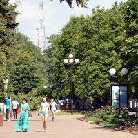 Лето :: Владимир Болдырев