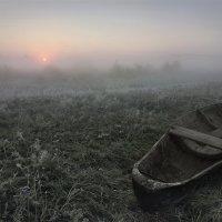 Ботник и солнце :: Александр Бархатов