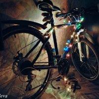 отголоски нового года или подготовка к велосезону 2015 :: Екатерина Яковлева