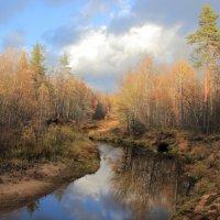 Осенняя речка :: Stream