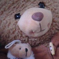 Медведи... :: Владимир Павлов