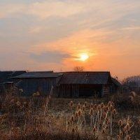 Село  солнышко...ночь  идет. :: Валера39 Василевский.