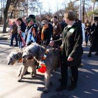 Персонажи парада Дня святого Патрика в Сокольниках 4 :: Николай Дони
