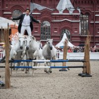 01 Конное шоу - Lorenzo Emotion horse show in Moscow :: Максим Максимов