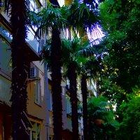 есть улицы центральные.. :: Равиль Хакимов