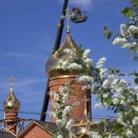Новый храм 4 :: Василий