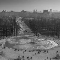 Зима в саду Тюильри :: Марат Закиров