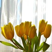 Мелодия желтого цвета :: Larisa Simonenkova