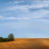 Весна в Южной Чехии :: Влад Соколовский