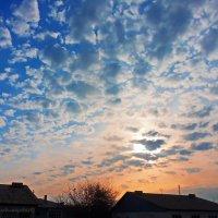 утро из моего окна..... :: Юрий Владимирович