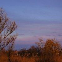 в ожидании заката... :: Ксения Довгопол