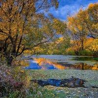 Осень :: Александр Тулупов