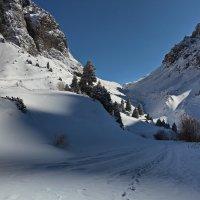 Поднимаясь в горы :: Сергей Мурзин