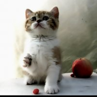 Кошка-акварелька :: Наталья Морозова