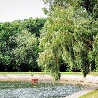 Терлецкие пруды :: Vladlena Che