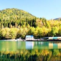Озеро Рица :: Andrey Panoff
