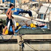 Из серии Ашкелонские рыбаки. :: Leonid Korenfeld