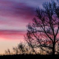 Март в закате... :: Константин Филякин