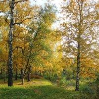 золотая осень :: Юлия Меликян