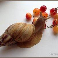 Какая вкуснее? :: Anna Gornostayeva