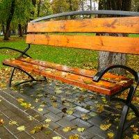 Осень :: Анатолий Борисов