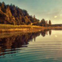 Вечёрка на озере :: Михаил Александров