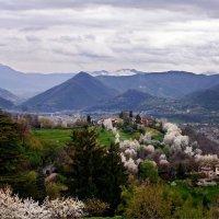 Весна в Бергамо :: Тиша