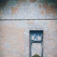 Закрытые окна :: Денис Ведь