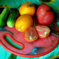 Набор для салата. :: nadyasilyuk Вознюк