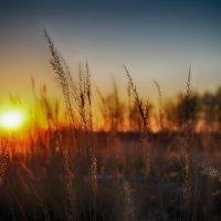 весенний закат :: Иван Анисимов