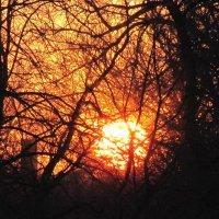 В сто сорок солнц закат пылал! :: Людмила Жданова