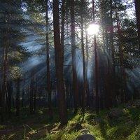 утро в альп-лагере :: Ларико Ильющенко