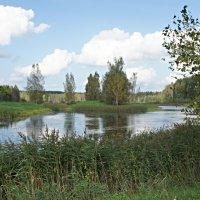 Неподалеку от усадьбы Петровское вырыт пруд в форме рыбы. :: Елена Павлова (Смолова)