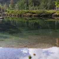 Чистая вода :: раиса Орловская