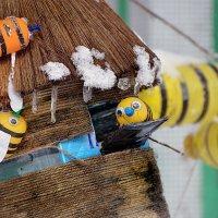 зимний домик для пчёлок :: Евгений Фролов