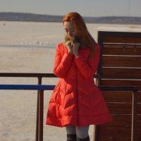 Морозный день :: Наталья Николаева