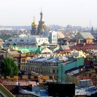 купола :: Сергей