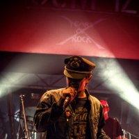 Punk Rock :: Роман Шершнев