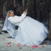 свадебная съемка :: Helena Shelehova