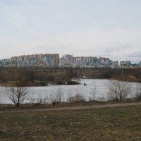 пруд :: Людмила Монахова