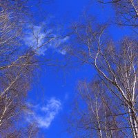В небе марта :: Татьяна Ломтева