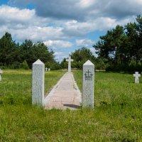 Захоронения военнопленных немцев, румын и венгров :: Николай Пекарский